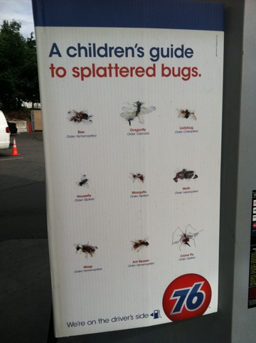 Bug splats: strange sign at a gas station